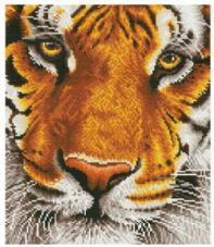 Diamond Dotz Bengal Magic Painting Kit
